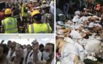Bousculade à la Mecque : Au moins 15 Sénégalais parmi les victimes, précise Mansour Diop de Zik Fm.Regardez