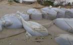 GANDIOL : les vagues narguent le COP 21.