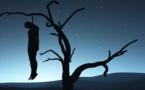 URGENT : Un homme se pend à un arbre à Moumbaye.