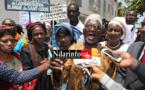 1er MAI | Mobilisation des travailleurs à Saint-Louis : toutes les revendications syndicales | VIDEO.