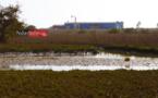 Saint-Louis : les Chinois polluent le fleuve. Les populations de Keur Barka, Mbambara, Bountou Ndour … très remontées.