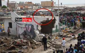 (Photos) Trois chiens créent le buzz à Guet-Ndar