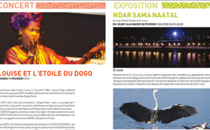 CULTURE: le Programme de l'Institut Francais de Saint-Louis ( janvier - mars 2017)