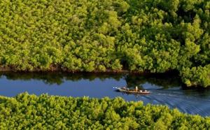 Gestion durable des zones humides : Un projet de 1,3 milliard de FCFA lancé au Sénégal