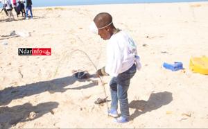 AIRE MARINE PROTÉGÉE DE SAINT-LOUIS : Une dynamique citoyenne plante 200 filaos et ramasse les plastiques (vidéo)