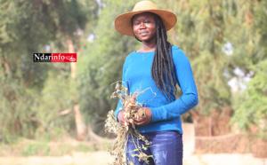 Entrepreneuriat agricole : la courageuse initiative de cette étudiante de l'UGB … (vidéo)