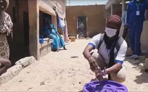 Saint-Louis : des jeunes engagent la bataille contre le coronavirus
