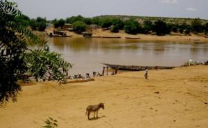 Fleuve Sénégal : une légère remontée des eaux à Bakel