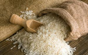 Saint-Louis va abriter un centre de formation dédié au riz