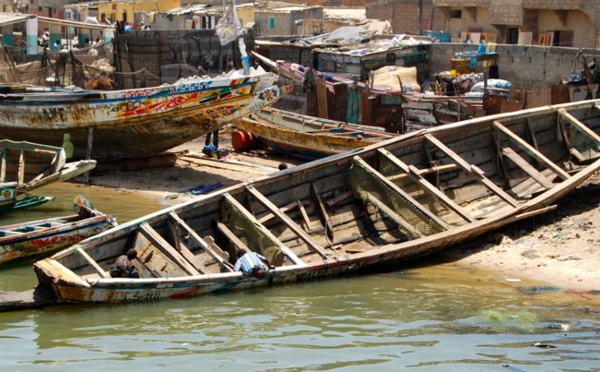 Non renouvellement des licences de pêche : 8.000 pêcheurs de Saint-Louis à quai.