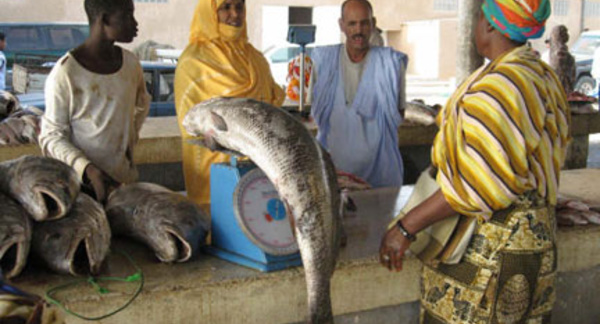 Suspension des pêcheurs de Guet-Ndar : le poisson devient cher en Mauritanie