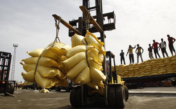 L'Isra met en garde contre les dangers du riz importé