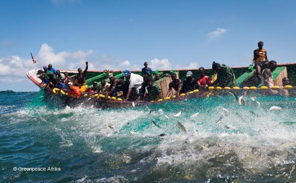 Des pêcheurs saint-louisiens préconisent le renforcement de la concertation avec Nouakchott