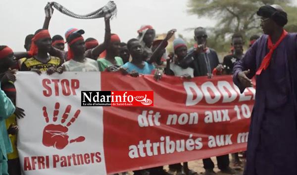 Litige foncier à Dodèle et Demette : les populations marchent contre l'affectation de terres à la société marocaine Afri Partners.