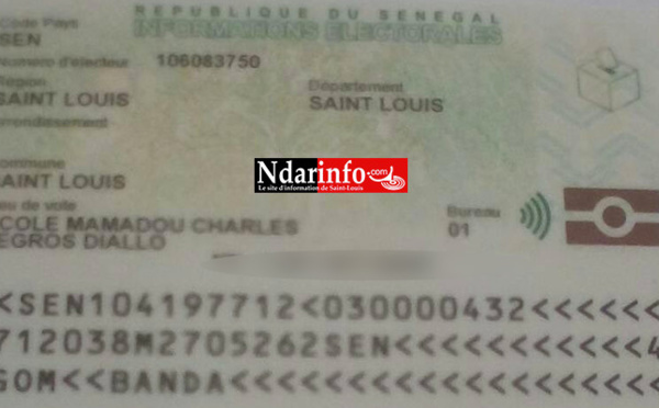 """Saint-Louis : deux cas de votes """" insolites"""" à Rawane NGOM et Mamadou Charles Legros DIALLO"""