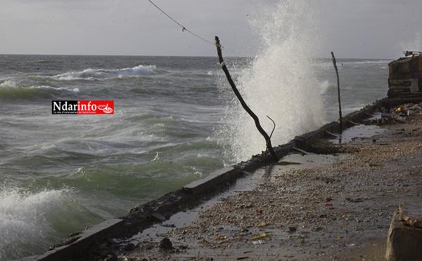 Lutte contre l'avancée de la mer : les caractéristiques de la digue de protection (vidéo)
