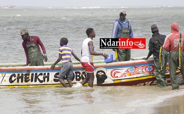 Octroi de Licences de pêche en Mauritanie : Macky SALL annonce une conclusion « très prochaine »