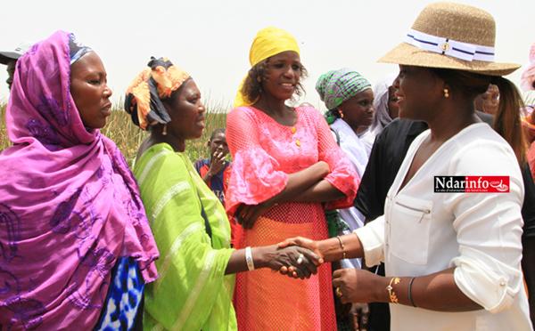En visite dans la vallée : Marie Angélique MANGA salue le « dynamisme » des agricultrices du WALO (vidéo)
