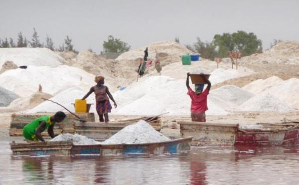 Le Sel Sénégalais est Mauvais (Rapport Greenpeace)