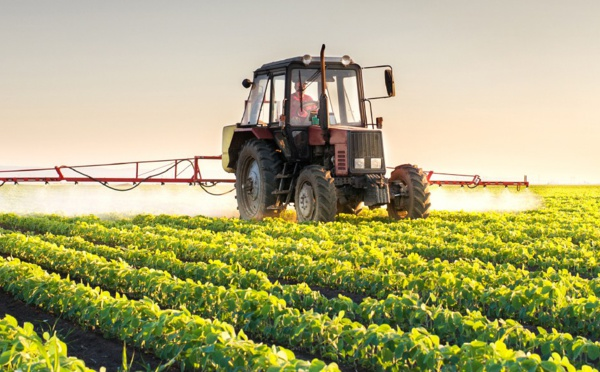 Saint-Louis : une filière agriculture lancée au lycée technique André Peytavin