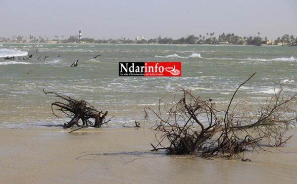 HOULE : De violentes attaques de vagues à GANDIOL