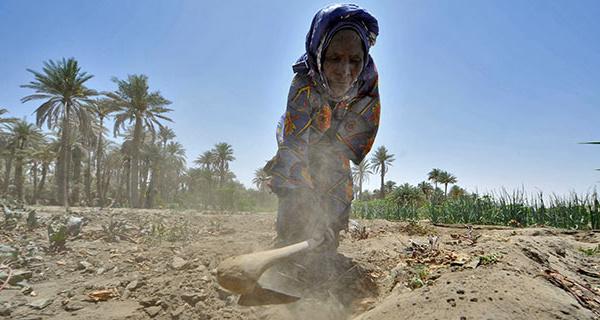 SAHEL : validation d'un plan d'investissement en faveur du climat