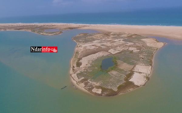 Documentaire - GUINAAR, l'île aux choux (vidéo)
