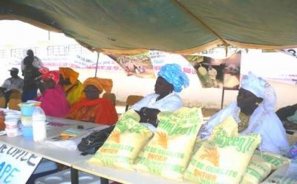 Les femmes productrices de  Saint-Louis plaident pour un accès équitable aux formules d'engrais et intrants