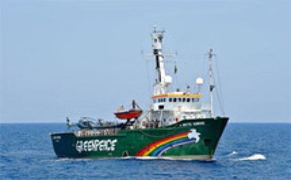 """Saint-Louis va accueillir la caravane """"Ma carte, mon futur"""" de Greenpeace Afrique"""