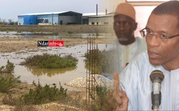 REJETS POLLUANTS : le ministre de la Pêche freine l'usine chinoise de Keur Barka (vidéo)