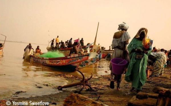 Accords de pêche Mauritanie-Sénégal : L'arme de Damoclès sur la tête de 25.000 Guet Ndariens