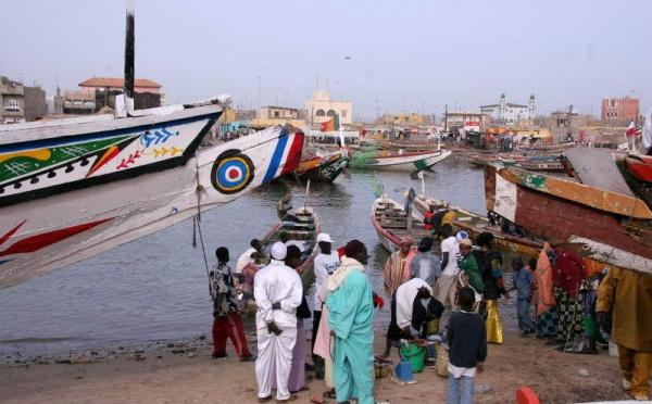 Saint-Louis: Une dizaine de pirogues réquisitionnées par des gardes-côtes bissau-guinéens