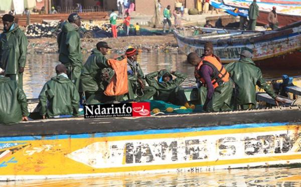 Licences de pêche : Les acteurs interpellent la tutelle et peaufinent un plan d'action