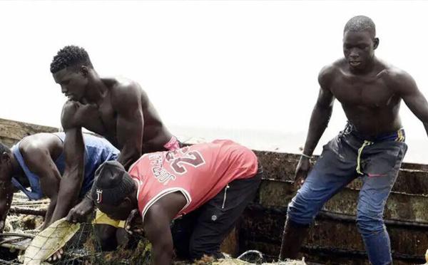 Maladie mystérieuse : quatre substances ont bel et bien été détectées en mer