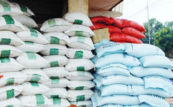 AUTOSUFFISANCE EN RIZ: La condition de 1,6 million de tonnes