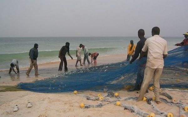 La Mauritanie et le Sénégal ont signé un protocole d'application d'une convention de pêche et d'aquaculture.