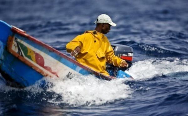 EXCLUSIF | Bilan naufrage à Guet Ndar : 127 pêcheurs, 107 rescapés, une vingtaine de pirogues recensée.