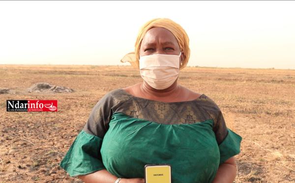 DAGANA : une mission du WE4F suscite de l'espoir auprès des productrices de riz (vidéo)