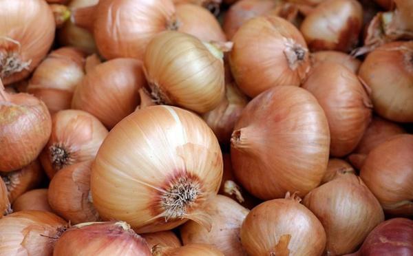 Oignon : l'interprofession suspend l'approvisionnement du marché local