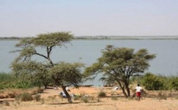 Saint-Louis : la revitalisation de la réserve du Ndiahel en cours