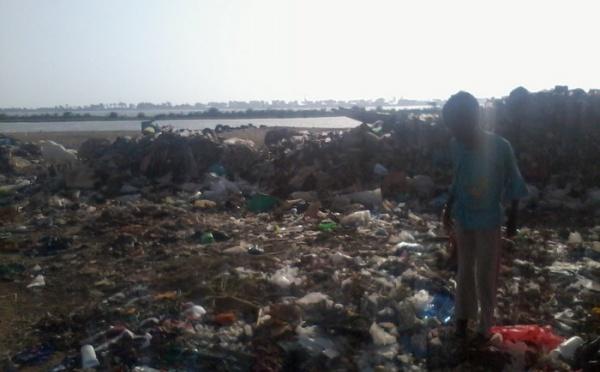 [PHOTOS] Danger: Une armée d'ordures menace la population à Pikine Bas Sénégal