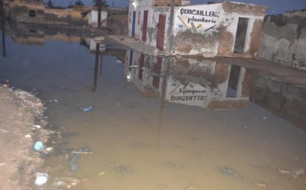 [VIDEO] Saint-Louis inondée : Plusieurs quartiers pataugent. Regardez