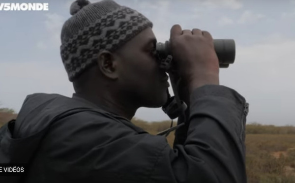 Voyage écologique : Partez à la découverte de la réserve de Gueumbeul et du Parc National de la Langue de Barbarie (vidéo)