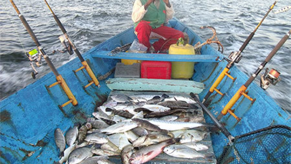 La CNUDM a été signée sans concertation avec la pêche artisanale (acteur)