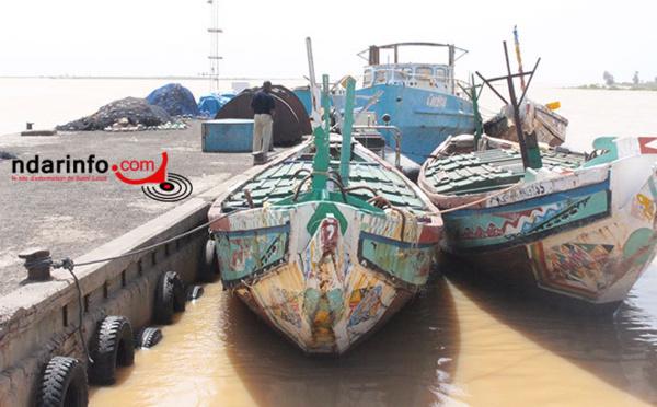 Tournée économique de Macky Sall dans la vallée du fleuve : Saint-Louis, 4 milliards de FCfa pour le nouveau Port de pêche