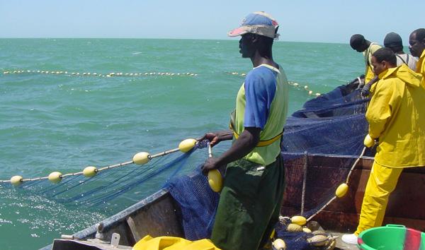 La Mauritanie expulse 74 pêcheurs de Saint-Louis, en situation irrégulière