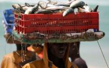 Le Sénégal parmi les pays les plus performants du continent
