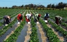 L'USAID alerte sur la menace d'une crise alimentaire au Sénégal.