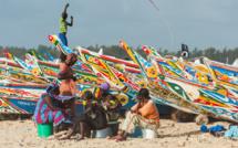 La pêche artisanale représente 83% des débarquements en 2017