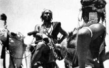 Réflexion sur l'origine des termes «Fulɓe», «pullo»  (et aussi «Wolof», «Bambara», «Soninke»). Par Niang Oumar